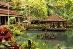 10-10-24 Indonesia (135) Bali R01 (Nikobo3) Tags: asia indonesia bali selva jungla templos paisajes nikon nikond200 d200 nikondx182003556vr nikobo joségarcíacobo flickrtravelaward ngc culturas arquitectura architecture naturaleza