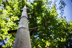 Bamboo Ladder (Kartjb) Tags: indonesie indonesia bali munduk bamboo ladder echelle bambou natural jungle travel a7 sony