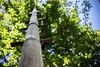 Bamboo Ladder (Kartjb) Tags: indonesie indonesia bali munduk bamboo ladder echelle bambou natural jungle travel a7 sony