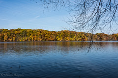 Nowrthwest Park (billandkent) Tags: 2016 billcannon windsorconnecticut connecticut northwestpark connecticutparks us usa unitedstates windsor billandkent park rainbowlake