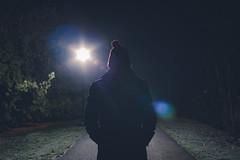 Night path (michaelraleigh) Tags: lamp longexposure trees f28l toodark infocus secluded albertlea outdoors 2035mm canon canoneos5dmarkii highquality minnesota