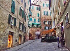 Sienna, Italy Apts., (The Bop) Tags: shutter windows stones apartments sidewalks cobblestone doorways restaurant children colors sienna olive