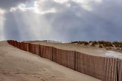 Lean Season (Aaron Springer) Tags: michigan northernmichigan beach sand dune sandfence snowfence sunray outdoor nature landscape
