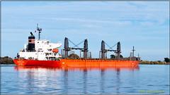 Eastern Asia_2495 LR (bradleybennett) Tags: ship shipping cargo tanker tank river delta boat port channel steam large crew crane bay ocean dock pier blue red water line bulkcarrier eastern asia