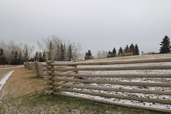 HFF Happy Fence Friday (davebloggs007) Tags: hff happy fence friday
