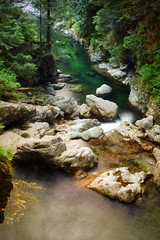 Lynn Valley (Romain Collet) Tags: vancity vancouver north shore bc canada british columbia nature stream water waterfall trees rocks green