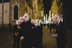 nt.jpg (Nick Asaro) Tags: pigs firenze florence pork street streetphotography