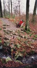 023 (fjordaan) Tags: lakes 1999 scanned gundula