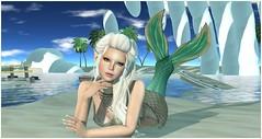 Man's Ruin - Little Mermaid Contest Entry (Blaise Glendevon) Tags: olive mandala secondlife mermaid maitreya izzies nailedit imeka theplastik fiftylindenfriday glamaffair ahabshaunt alaskametro maxigossamer even~tide ieqed buzzeri maitreyalara
