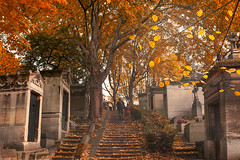 Autumn. Paris, France (Marji Lang Photography) Tags: november autumn trees two paris france cemetery grave leaves composition automne french alley novembre mood moody tomb streetphotography documentary atmosphere scene romance graves nostalgia nostalgic romantic perelachaise autumnal tombs cimetiere parisian toussaint parisien allsoulsday twopersons franais fetedesmorts marjilang