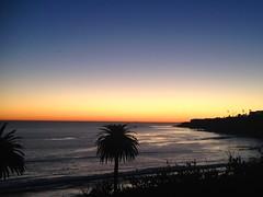 Coastline (1)