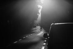 Valhallavgen (bbuuttrriixx) Tags: morning bw sol car ed calle nikon foto fotograf sweden stockholm s 180 ligt bil gata 28 nikkor f28 ai kar stad trd d3 ais sunn vg morgon asfalt 128 dimma svartvit ljus bilar swe 180mm svartvitt motljus valhallavgen dimmigt vackert gatufoto gatufotografi gatufotografering morgonbild gatufotograf streetarteverywhere vgstrck