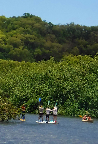 2015 Kauai Paddle Adventure  (128)