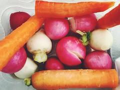 Root vegetables (Bruno's Flickr) Tags: california pink orange usa white japanese december vegetable carrot root radish turnip 2015