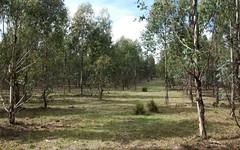 244 Bukeiro Road, Walcha NSW