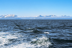 Greenland Sea (GrandJr) Tags: grandjr nikon f3 analog fuji velvia asa50 slide outdoor europe ais ngc high glacier hiking film landscape 50mm 14 ice iceberg iceland greenland sea water waves ship
