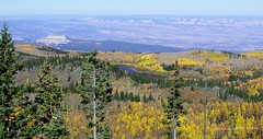 Skyway Point_2 (cowestoutdoors) Tags: vistas nature outdoors landscapes mountains forest fallcolors grandmesa lakes valleys overlooks