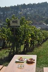 sDSC_0061 (L.Karnas) Tags: wien vienna wiede    viena vienne autumn austria sterreich herbst 2016 weinwandertag wein wander tag wanderung wine wandering neustift am walde
