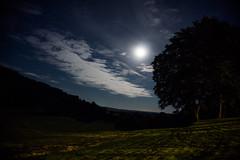 Shining moon (J-e-Y) Tags: moon night shine nuit lune brillante sony alpha 6000 nuage cloud nature parc national du perche bois wood artistique arbre tree foret forest