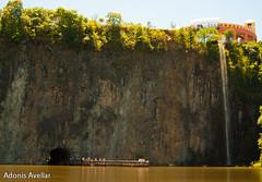 Parque Tangu-12 (AvellarAdonis) Tags: domingo parquetangua sol tangu cwb fds
