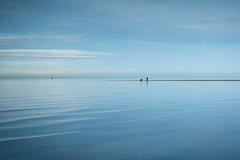 a sense of feeling (stocks photography.) Tags: michaelmarsh whitstable