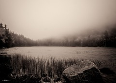 Misty Bubble Pond (59roadking - Jim Johnston) Tags: ifttt 500px acadia national park maine water clouds sky fog mist forest pond bubble
