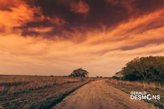 Campo de Bella Vista - Provincia de Corrientes (geralddesmons) Tags: campo farm camino corrientes argentina fotografias fotografo igargentina igcorrientes paisaje landscape gerald desmons