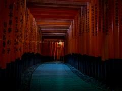 Fushimi Inari-Taisha, Kyoto (802701) Tags: fushimi fushimiinarishrine fushimiinaritaisha kyoto japan olympus shrine