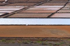 Lanzarote (Antonio Vaccarini) Tags: lagunadejanubio lanzarote isolecanarie spagna canaryislands spain islascanarias espaa canoneos7d canonef24105mmf4lisusm antoniovaccarini salina sale salt