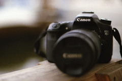 70D shot with 1V (Michelle de Vries) Tags: canon 1v film 35mm depthoffield 50mmlens 70d