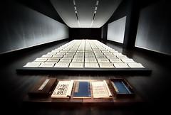 Book From The Sky, Blanton Museum Austin TX (sbmeaper1) Tags: hdr book from the sky xu bing blanton museum austin tx