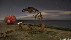 Dinosaur Jr. (mark silva) Tags: sculpturebythesea sxsbondi sydney nsw australia tamarama lightpainting paintingwithlight torch flashlight 2016 harriefashertransition