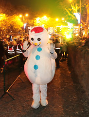 Swords Christmas Lights, 2016 (Fingal County Council) Tags: 2016 swords swordscastle lights christmaslights fingal fingalevents fingalcoco fingalcountycouncil pwp ireland irl