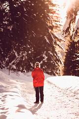 Follow the path (Saana Londono Photographie) Tags: photography photographie photoshoots canon colors couleurs cute close camera beautiful beauty eos expo eye nature noir portait wild wildlife white winter snow reflex perfect people
