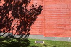 #433 (T Miranda) Tags: casadashistóriaspaularego arquitectura eduardosoutodemoura galeriadearte museu betãoarmado artecontemporânea cascais portugal tiagoalvesmiranda