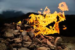 Vulcano di Monte Busca (Strocchi) Tags: tredozio montebusca vulcano fontanaardente fuoco fire fiamma flame methan canon eos6d 24105mm volcano