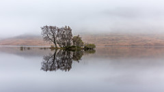 Elegy (rgcxyz35) Tags: morning scotland trossachs mist island water reflections locharklet autumn trees lochs