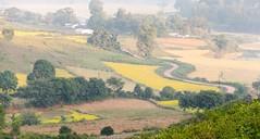 Winter Haze (ashok kolluru) Tags: vizag india