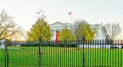 2016.12.01 World AIDS Day at The White House, Washington, DC USA 09233-HDR