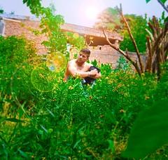 105/365... Meraki! ...Meraki significa hacer algo con pasin, con el alma, con amor y creatividad! #365Dias #365Days #365PhotoProject (cristianyocca) Tags: 365days 365photoproject 365dias