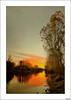 Incombustible otoño (V- strom) Tags: naturaleza ocaso sol paisajes rojo flora nikon nikon2470 nikon50mm texturas