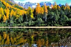 Lago d'Entova - Valmalenco (SO). (GIVI58) Tags: italia italy sondrio valmalenco lago entova lagodentova lombardia riflessi autunno autumn fall