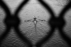 Pagaiando (luporosso) Tags: roma rome italia italy tevere fiume river canottaggio boating barca boat rowingboat bianconero biancoenero blackandwhite blackwhite blancoynegro noiretblanc monocromatico monochrome monocromo allaperto nikond300s nikonitalia imdifferent