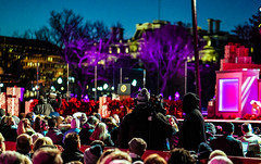 2016.12.01 Christmas Tree Lighting Ceremony, White House, Washington, DC USA 09283