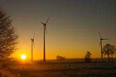 frosty giants (dretschi) Tags: bröckel niedersachsen morgenrot sonnenaufgang windkraft windrad windmühlen feldmark frost kalt himmel sky mornig sunrise cold frosty deutschland bright