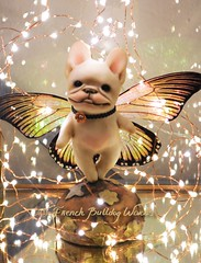 I made this baby a while back but I think it's time to let her find a new home (French Bulldog Works) Tags: portrait sculpture dog pet cute art smile bronze butterfly puppy french happy gold lights one miniature wings memorial punk sweet ooak cream mini bulldog steam creme kind fairy figure works frenchie frenchbulldog figurine brass steampunk keepsake fbw frenchbulldogworks