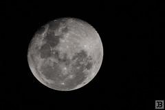 Moon (Joel Bramley) Tags: moon nature astro astrophotography lunar