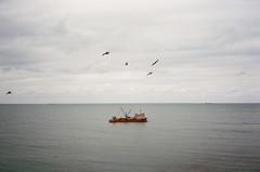(arthur shuraev) Tags: trip travel sea black film 35mm turkey ship olympus 400 agfa mjuii 2015   kilyos