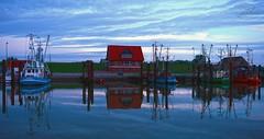 Daybreak in Fedderwardersaiel (MaiGoede) Tags: ocean harbor nikon northsea hafen nordsee beforesunrise ammeer wesermarsch fischerhafen butjadingen fedderwardersiel wesermndung hafenbilder cmatthiasihriggoede