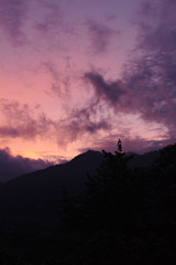 Cloud Forest Sunset (sphaisell) Tags: cloud forest ecuador cloudforest sunet loscedros sphaisell